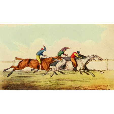 National Sports of GB 1903 Doing their best Stretched Canvas - Henry Alken (24 x