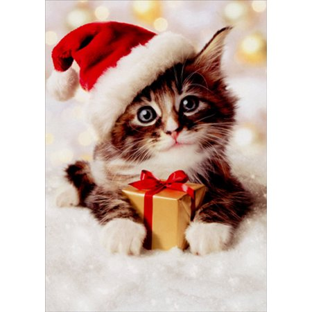 Avanti Press Precious Kitten With Santa Hat Christmas (Card Magical Hats)