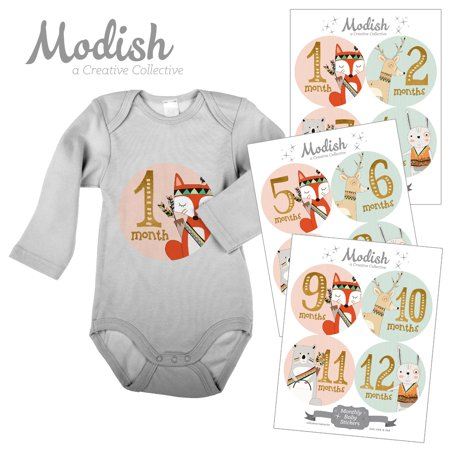 Modish Monthly Baby Stickers, Girl, Woodland Animals, Fox, Bear, Deer, Rabbit, Baby Photo Prop, Baby Shower Gift, Baby Book (Rabbit Photo Gift)