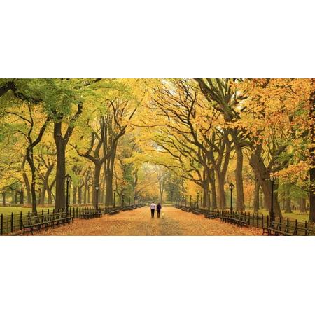 Usa, New York City, Manhattan, Central Park, the Mall Print Wall Art By Michele (Manhattan Mall)