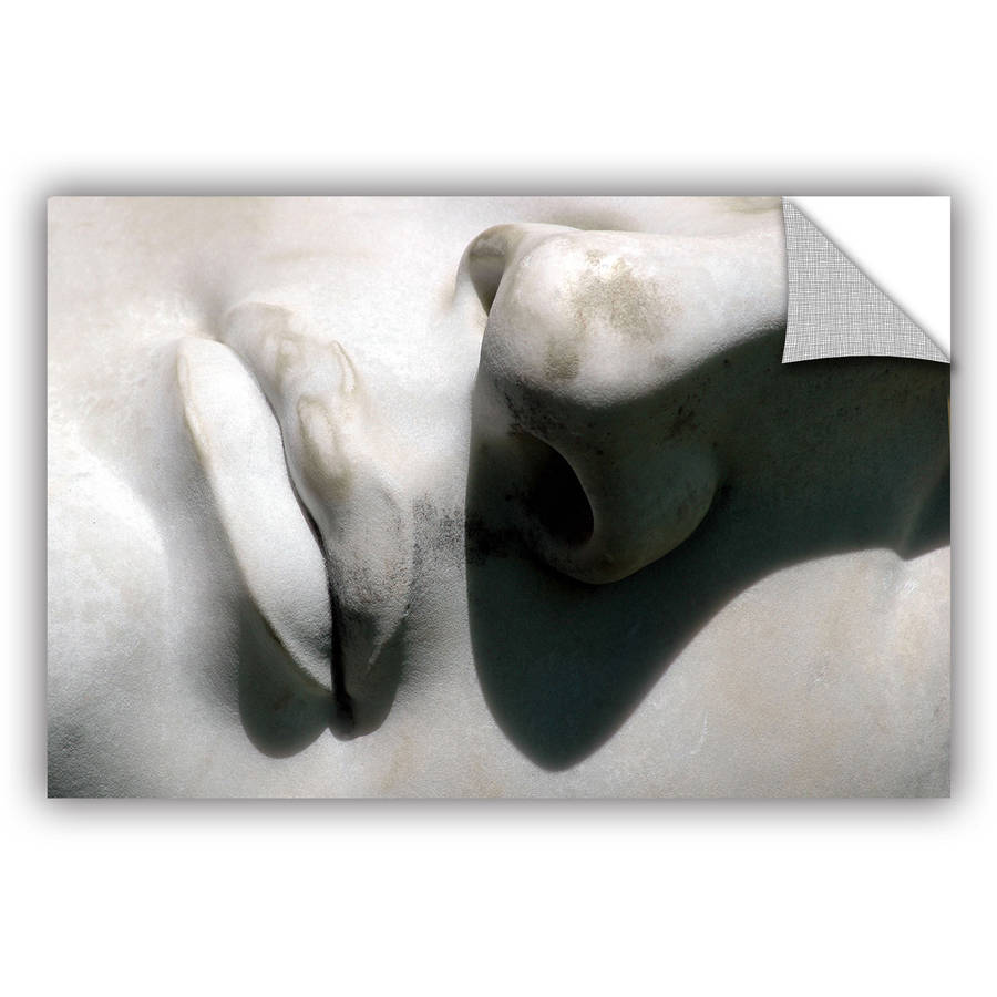 "ArtAppealz Dan Holm ""Nose and Mouth"" Removable Wall Art"