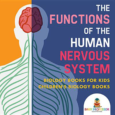 The Functions of the Human Nervous System - Biology Books for Kids | Children's Biology Books - - Function System