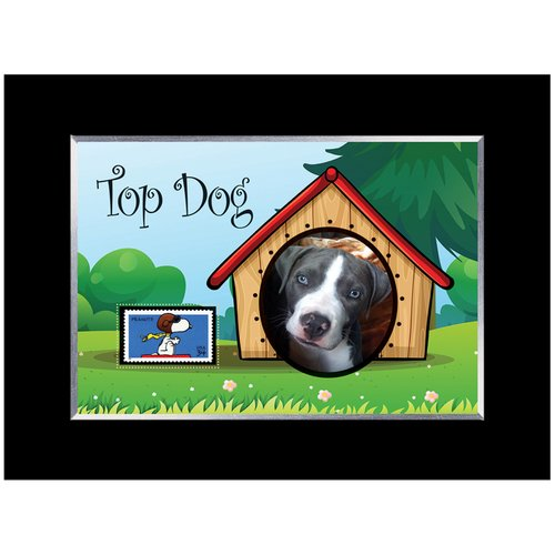 American Coin Treasures Top Dog Picture Frame