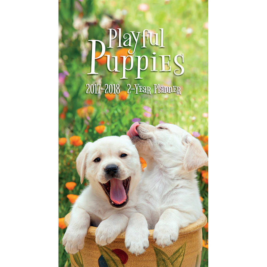 Turner Photographic 2017 2-Year Planner, Playful Puppies