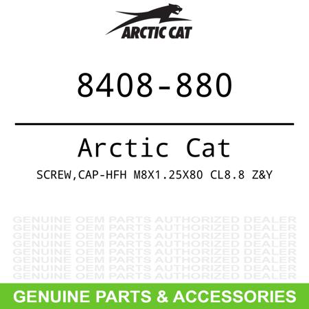 OEM M8 x 1.25 x 80 Cap Screw Arctic Cat Bearcat Lynx Sno Pro 2000 5000 6000 9000 Arctic Cat Lynx