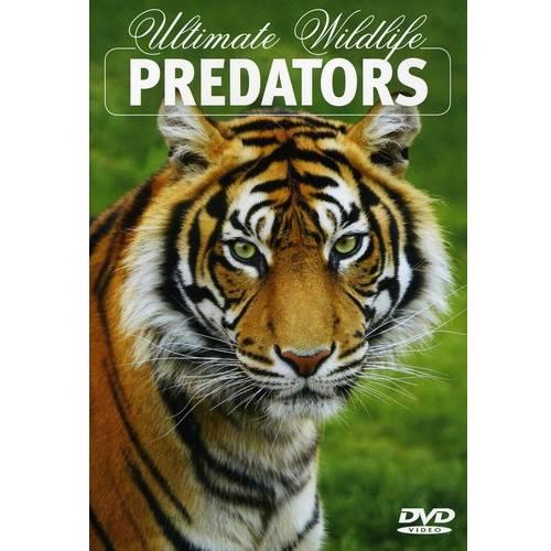 Ultimate Wildlife: Predators