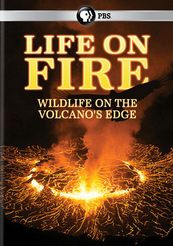 Life on Fire: Wildlife on the Volcano's Edge (DVD) by PBS DIRECT