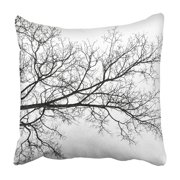 ARHOME Dry Tree Branch Silhouette on White Acacia Agriculture Evolution Forest Autumn Black Pillowcase 18x18 inch