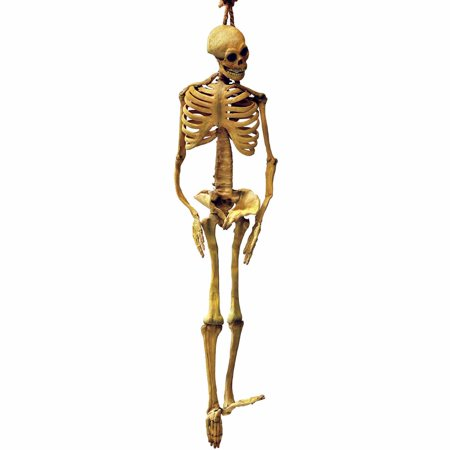 Latex Full-Body Skeleton Halloween Decoration (Latex Skeleton)