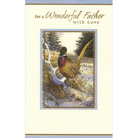 Freedom Greetings Pheasant: Father Christmas Card ()