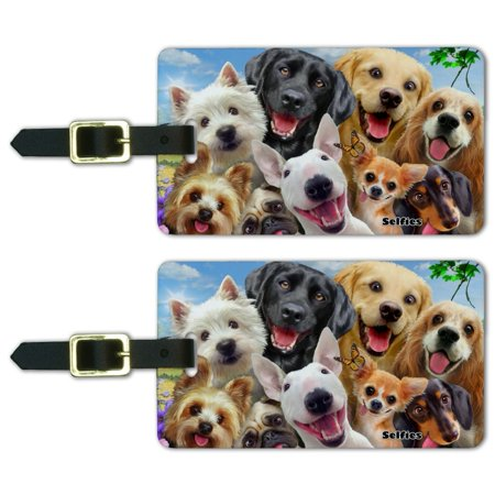 Dogs Selfie Lab Golden Retriever Dachshund Westie Pug Terrier Luggage ID Tags Suitcase Carry-On Cards - Set of 2