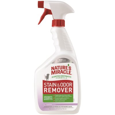 Nature's Miracle Dog Stain & Odor Remover Spray with Lavender Scent, 32