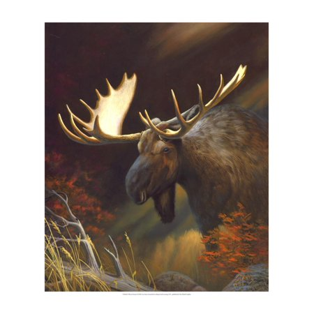 Moose Portrait Print Wall Art By Leo Stans (Moose Portrait)