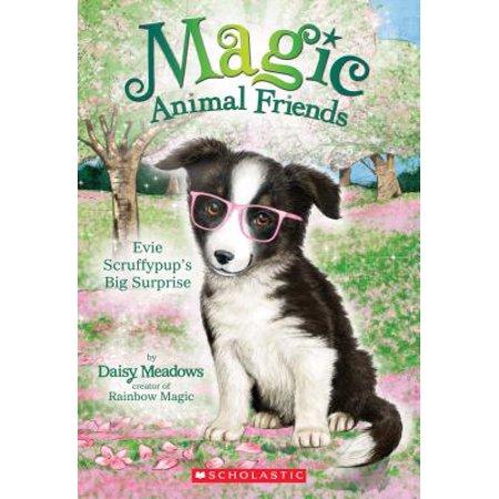 Friends Animal - Evie Scruffypup's Big Surprise (Magic Animal Friends #10)