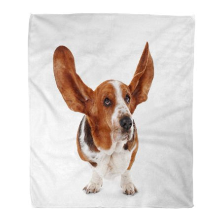 ASHLEIGH 50x60 inch Super Soft Throw Blanket Brown Cute Basset Hound Dog on Puppy Adorable Home Decorative Flannel Plush Blanket