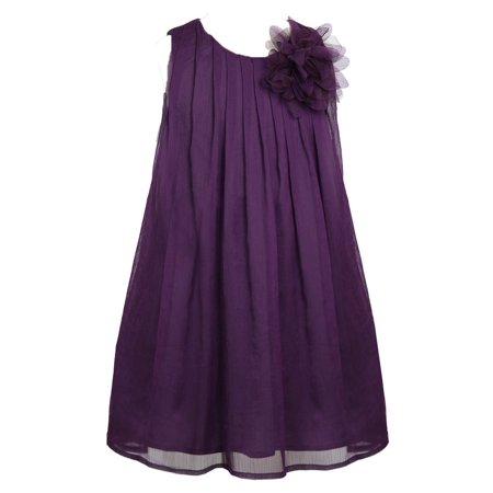 Pretty School Girls (Little Girls Plum Pretty Chiffon Flower Girl Dress)