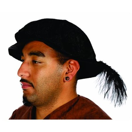 alexanders costumes renaissance hat with feather, black, one size](Renaissance Hats)
