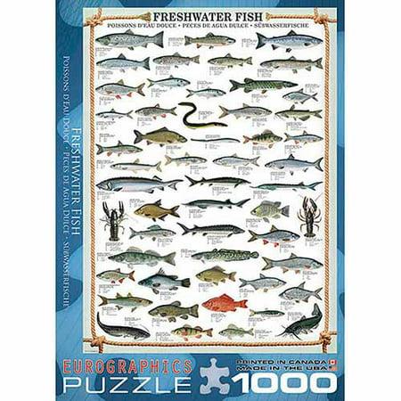 EuroGraphics Freshwater Fish 1000-Piece Puzzle