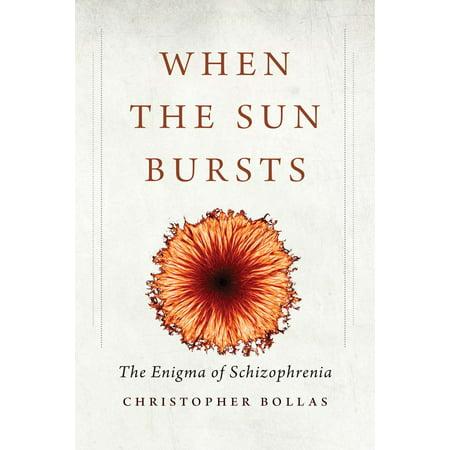 When The Sun Bursts   The Enigma Of Schizophrenia