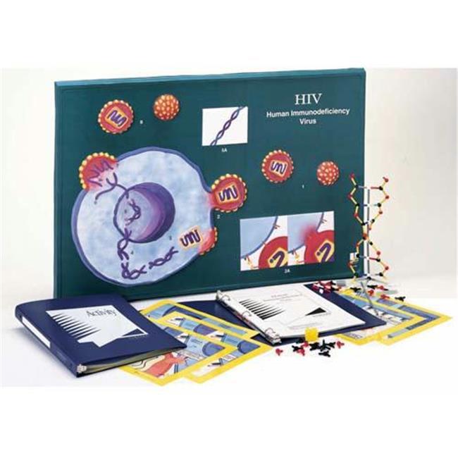Olympia Sports 13560 HIV Model Activity Kit