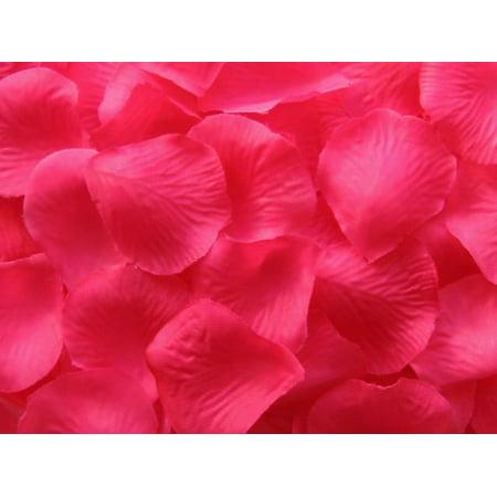 100 Hot Pink Quality Silk Rose Petals Confetti - Wedding Decorations](Pink Confetti)