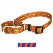 Yellow Dog Design M-TSOB102M Team Spirit Orange and Blue Martingale Collar - Medium
