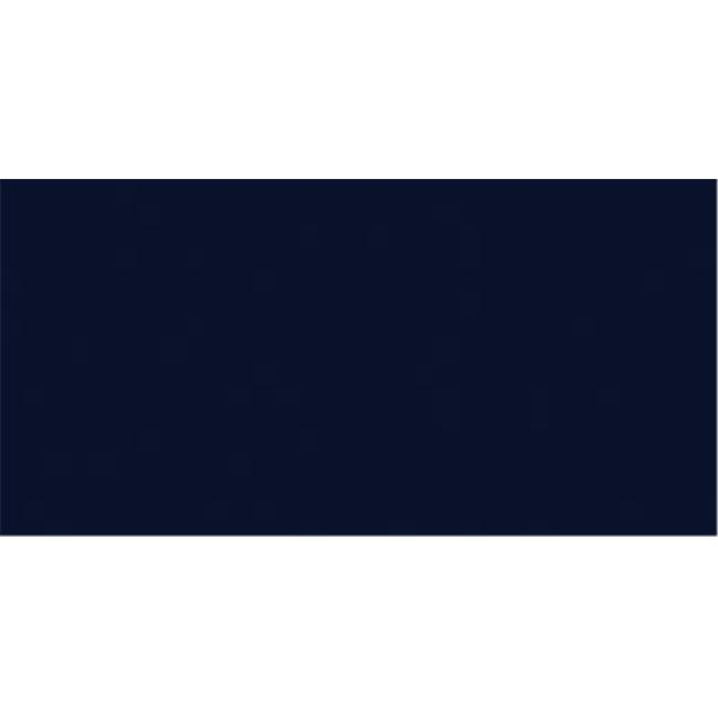 Design Master 270961 Colortool Floral Spray Paint 12 Ounces Navy Blue