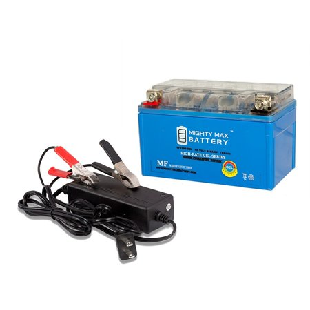 YTZ10S GEL Battery Replaces BMW 61217721862 + 12V 2Amp -