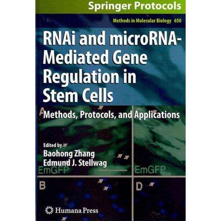 Rnai And Microrna Mediated Gene Regulation In Stem Cells