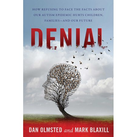 Denial : How Refusing to Face the Facts about Our Autism Epidemic Hurts Children, Families, and Our Future (Fact Family Math)