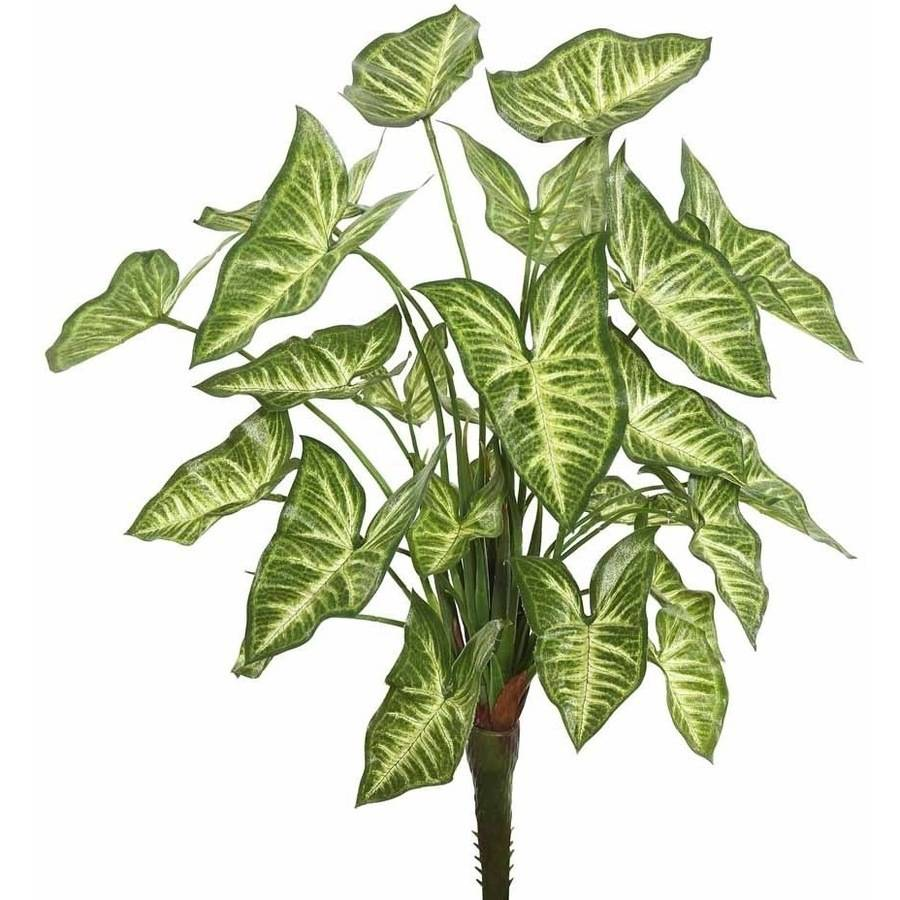 "Vickerman 22"" Artificial Green Syngonium Bush Featuring 25 Leaves"