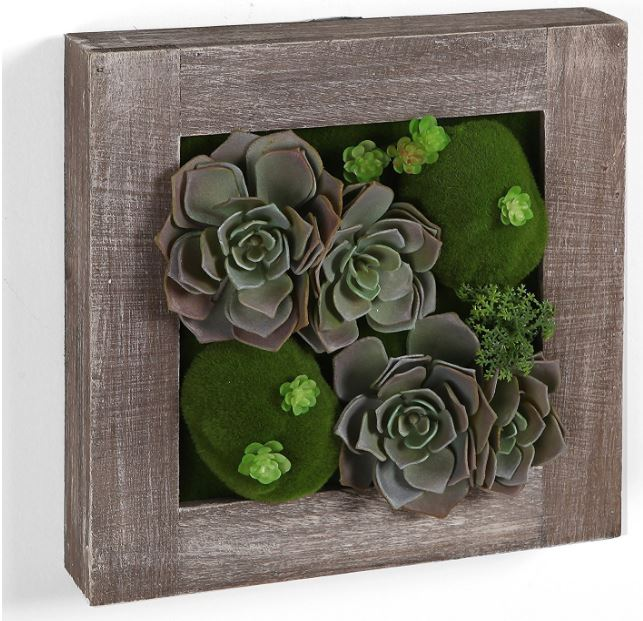 Image of 10in Wood Tray Succulent Garden