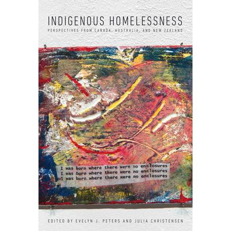 Indigenous Homelessness - eBook (Jackson David Ellefson Kelly Bird Bass Review)