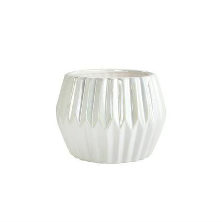 American Atelier 4.9 Inch Textured White Ceramic Succulent