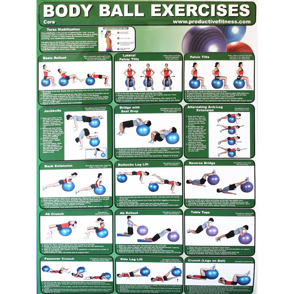 Productive Fitness Home Gym Work Out Poster - Laminated (Many Exercises)