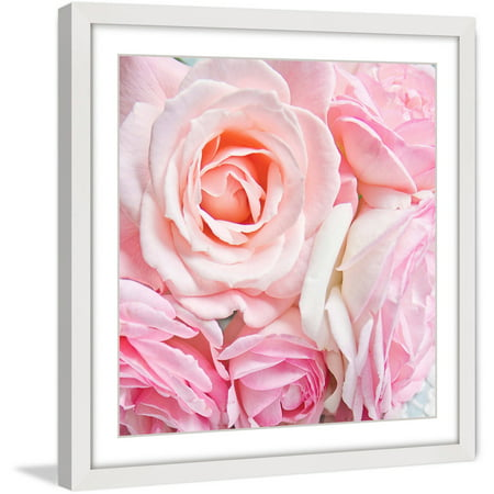 Marmont Hill  Pink Roses  By Sylvia Cook Framed Painting Print