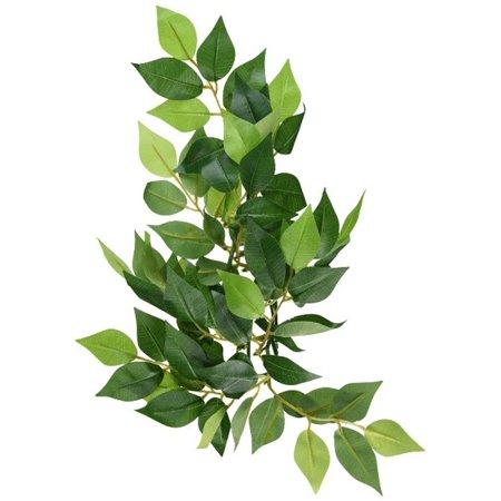 - Exo Terra Silk Terrarium Plant, Small, Ficus