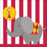 Circus Time 1st Birthday 3-Ply Lunch Napkins , 2PK