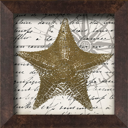 PTM Images Starfish Framed Graphic Art