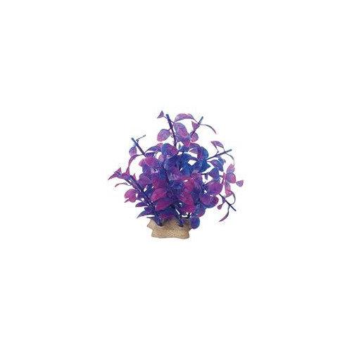 Pure Aquatic Natural Elements Ludwigia Technicolor Aquarium Ornament in Purple (Set of 2)
