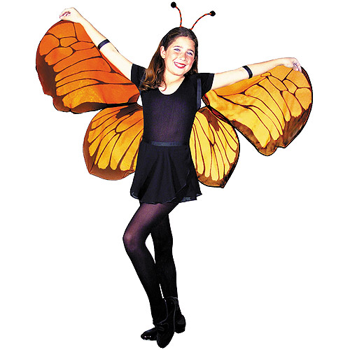 Butterfly Wings Child Halloween Accessory