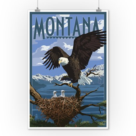 Montana   Eagle Perched With Chicks   Lantern Press Poster  9X12 Art Print  Wall Decor Travel Poster