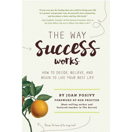 The Way Success Works: How to Decide, Believe, and Begin to Live Your Best Life -