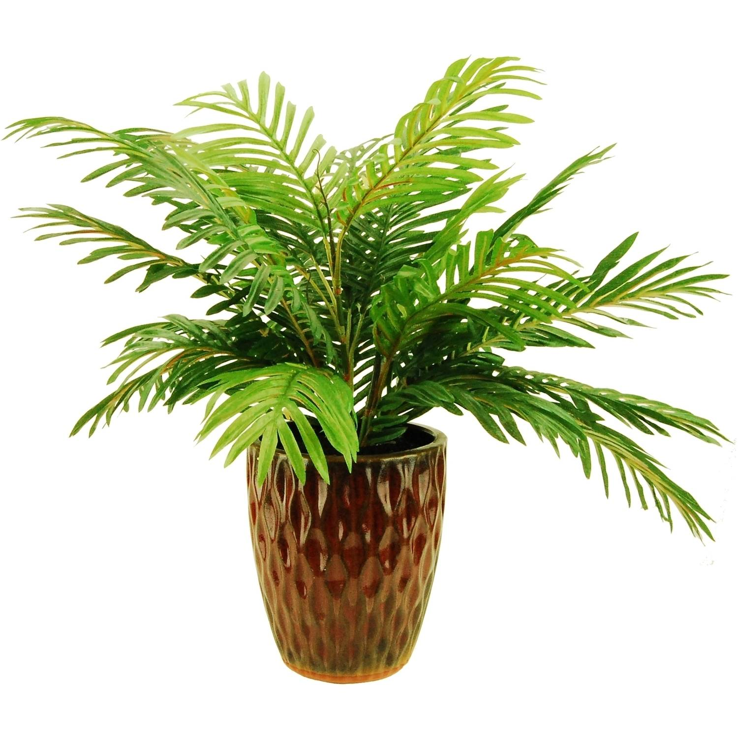 """24"""" Artificial Pheonix Palm in an Embossed Ceramic Vase"""