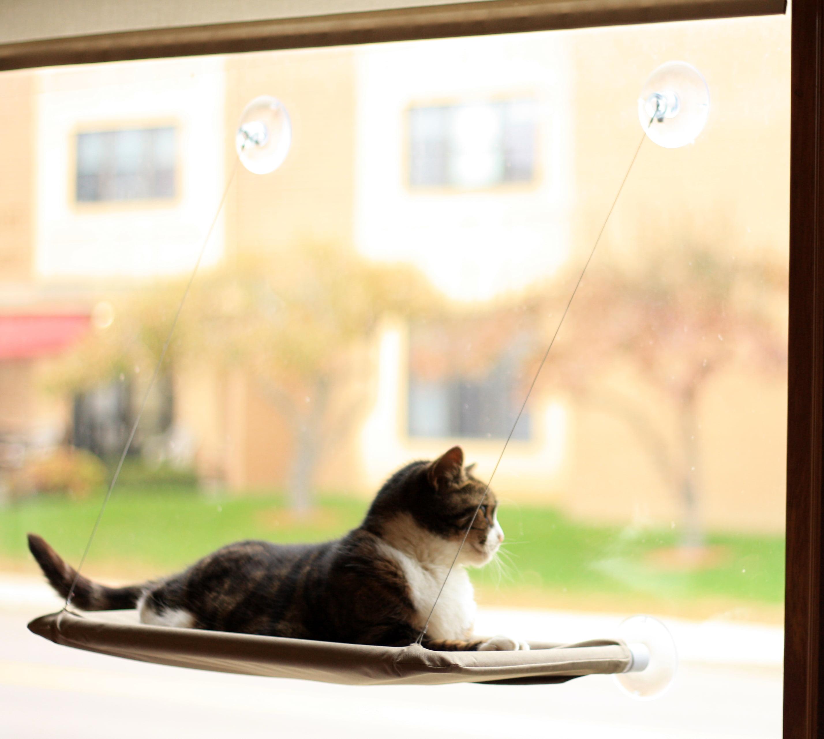 evelots window mounted cat bed window kitty perch strong u0026 durable beige walmartcom