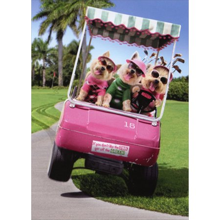 - Avanti Press Three Dogs Riding Golf Cart Funny Birthday Card
