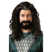 Hobbit Thorin Hair Kit Halloween Accessory