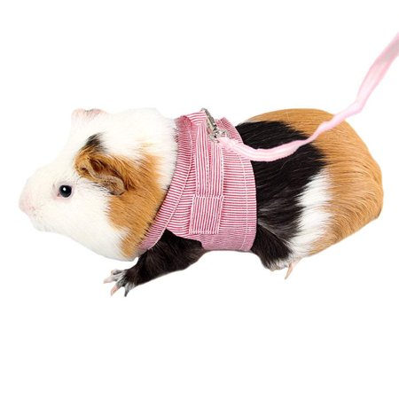 Pet Hamster Traction Strap Outdoor Training Soft Cotton Clothes Rope for Hamster Guinea