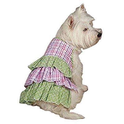 zack & zoey um3003 08 43 summer breeze dress for dogs, xx-small green