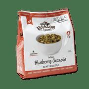 Augason Farms Instant Blueberry Granola 7.5 oz Pantry Pouch